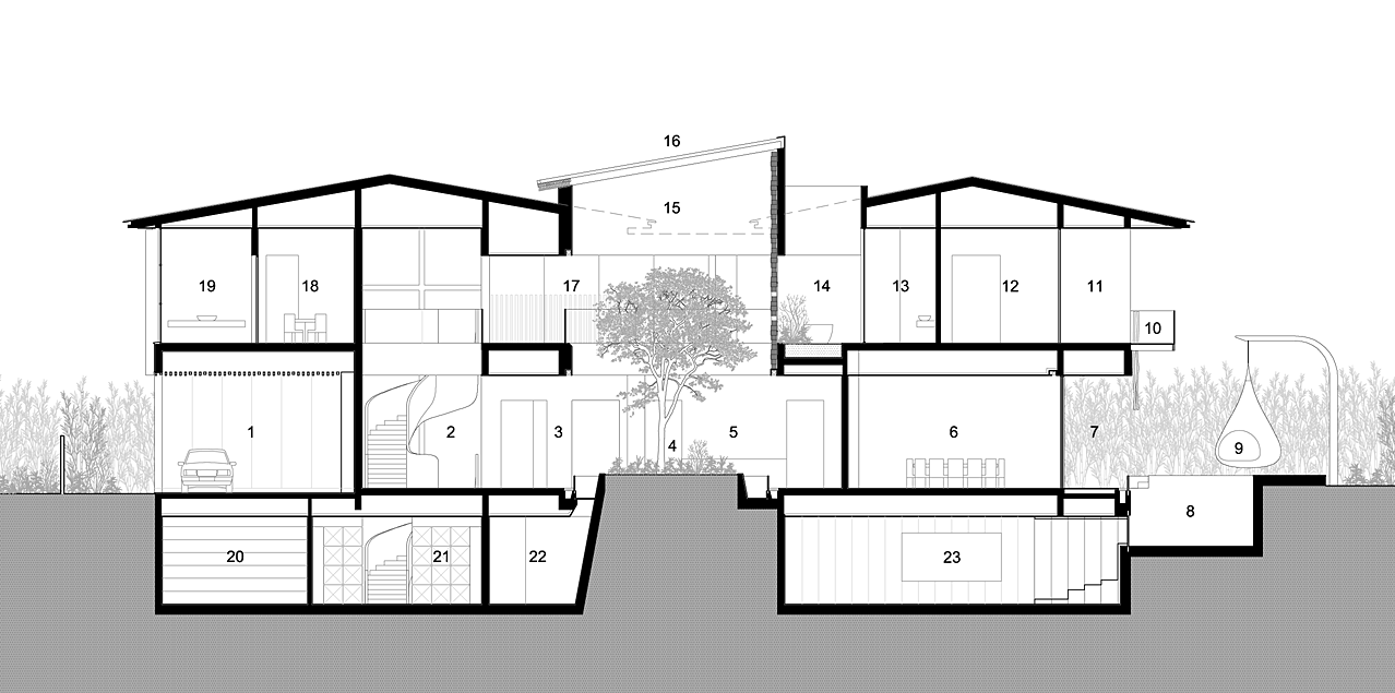 Hatterwan Architects Ficus House Section 01